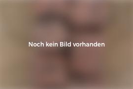 Basalt Kantenstein 6x25x100 cm anthrazit gesägt/gespalten
