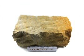 Sand Mauerstein 20x20x40 cm gelblich-grau